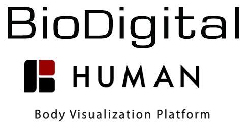 link to biodigital.com