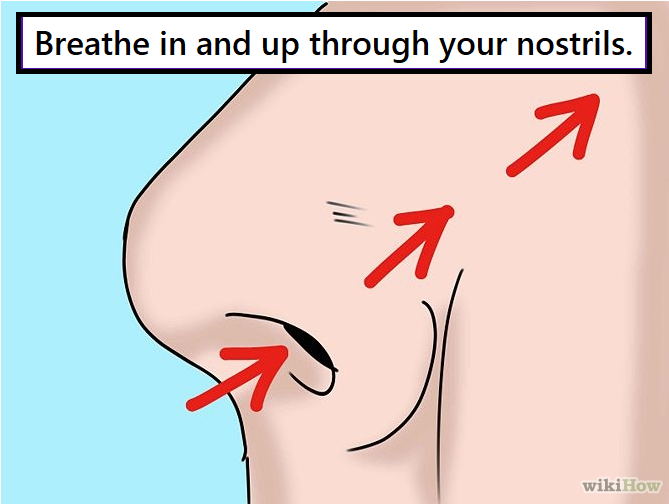 Breathing with your Base-Line muscles. Image of face with arrows going up into the nostrils. Breathe in through your nostrils, feel your whole body extend. Breathe out through your mouth. Repeat.