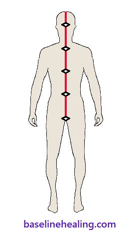 the anatomy of alignment. human figure from the front with 5 markers on the midline. The 5 markers are parts of our midline anatomy which should align on the median plane, the cut that splits the body into equal left and right halves. From bottom to top: 1. The pubic symphysis of the pelvis, the bony bit midline between the legs at the front. 2. The navel/belly button. 3 and 4. The bottom and top of the sternum midline where the ribs meet at the front.  5. The back of the head, midline bump known as the external occipital protuberance.