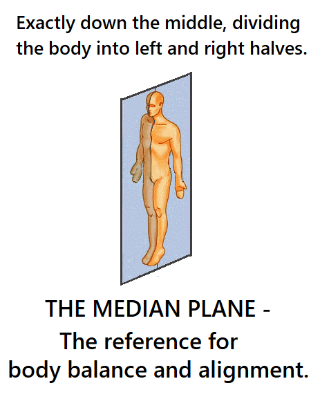 the body split in two - left and right halves.  Right down the middle is the cut that is known as the median plane.  Our reference for body alignment and balance.